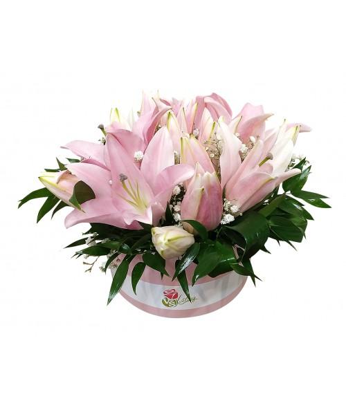 box lilií