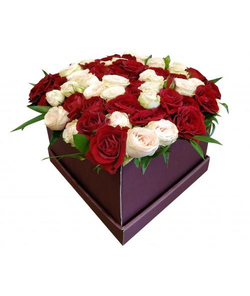 Box trsových růží