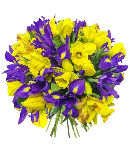 Yellow-blue spring