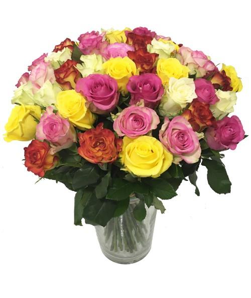 Short roses