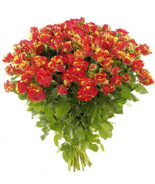 Trsové růže
