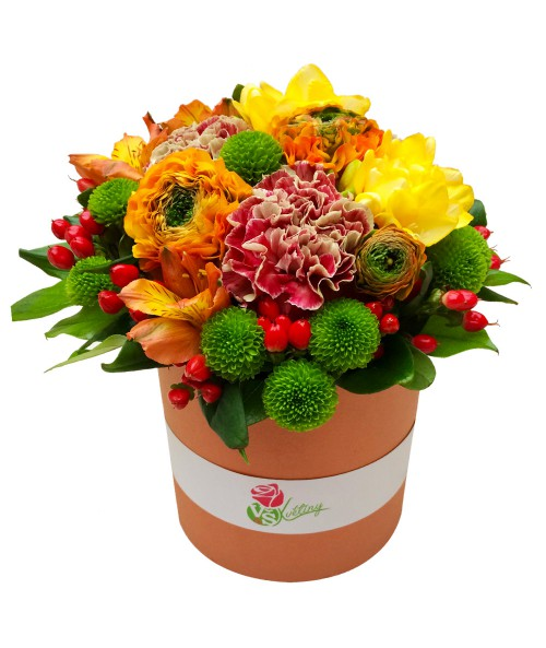 colourful-flower-box
