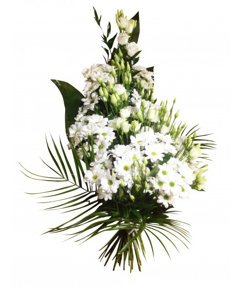Funeral white daisies