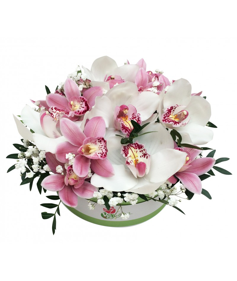 Orchids box