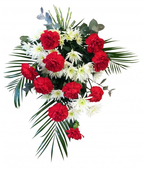 Red carnations and white daisies