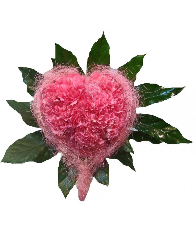 Heart of carnations