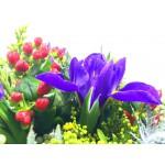 Nevšední květy