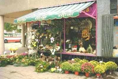 Květiny V&Š, s.r.o. – Mendlovo nám.