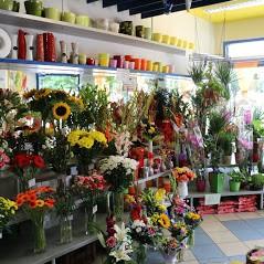Květiny V&Š – Táborská