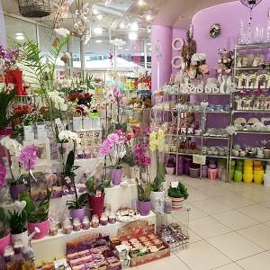 Květiny V&Š, s.r.o. – IBC